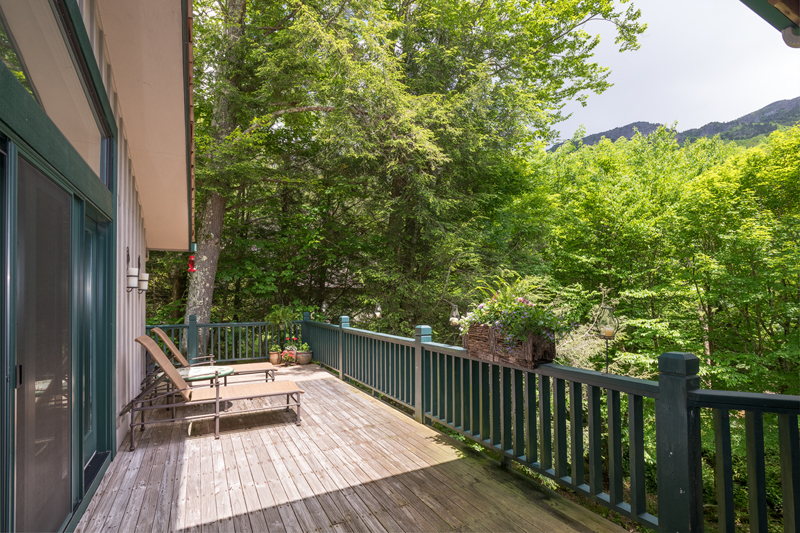 Back_Deck_View_Spring_1w_Trotter.jpg